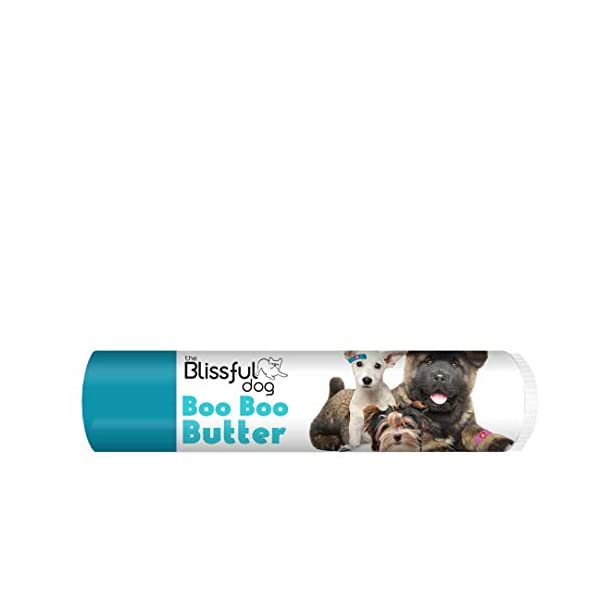The Blissful Dog Boo Boo Butter 1