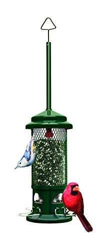 Squirrel Buster Standard Squirrel-proof Bird Feeder w/4...