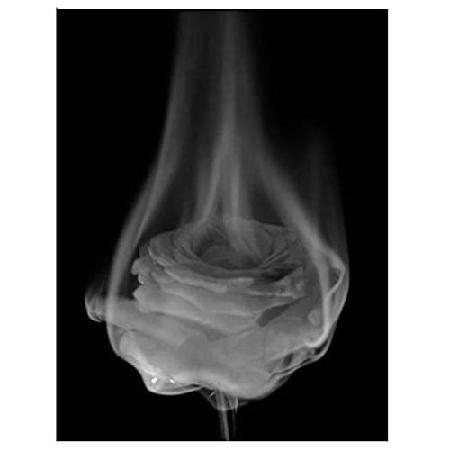 Kit De Pintura De Diamante 5D Con Taladro Completo - Diy Rosa Blanco Y Negro Pintura De Diamante De Flor De Rosa - Abstracto Taladro Redondo Cuadrado Completo 5D Bordado De Diamantes Mosaico Artesaní