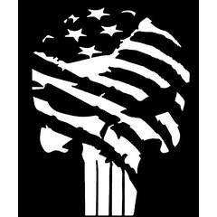 Chase Grace Studio Punisher Skull Flag America USA Military Vinyl Decal Sticker|White|Cars Trucks Vans SUV Laptop Wall Art|5.5  X 4 |CGS113