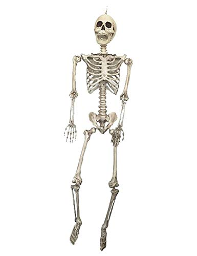 THEE Scary Skull Bone Party Human Skeleton Anatomical Model Halloween Decoration Height 90cm/35
