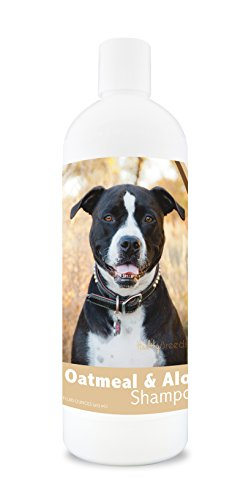 Healthy Breeds Dog Oatmeal Shampoo with Aloe for Pit Bull - Over 75 Breeds – 16 oz - Mild and Gentle for Itchy, Scaling, Sensitive Skin – Hypoallergenic Formula and pH Balanced