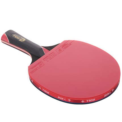 Aqzor Ping Pong Paddle Set of 2-5 Star Professional Ping Pong Paddle Advanced Training Table Tennis Racket with Carry Case