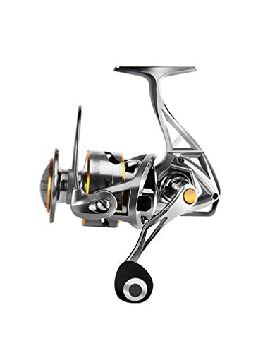 The Best Fishing Reel for Salt Water Freshwater, Super Power Smooth Fishing Reel, 4.9:1 Gear Ratio 17+1 Bearing (Size : 6000)