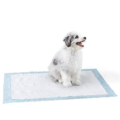 AmazonBasics Dog and Puppy Pee, Potty Training Pads, Heavy Duty X-Large (28 x 34) - Pack of 25