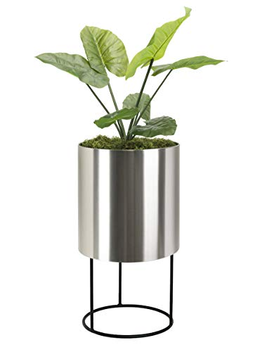 """Modern Tall Planter Knox Brushed Stainless Steel Planter with Stand. Best Round Metal Planter Indoor Outdoor Pot 18"""" x 33"""" Inch Tall Contemporary Heavy-Duty Cylinder, Architectural Floor Planter"""