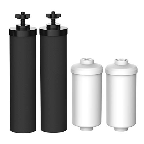 FilterLogic Water Filter, Compatible with Black Filters (BB9-2) & Fluoride Filters (PF-2) Combo Pack, Doulton& Propur Gravity Filter System - Includes 2 Black Filters and 2 Fluoride Filters