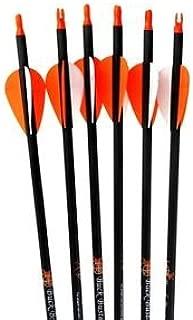 Best buck buster archery target Reviews