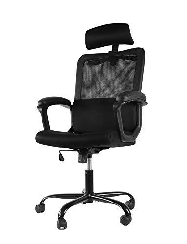 Smugdesk Mesh Office Chair, High Back Ergonomic Desk Task Chair Padding Armrest Adjustable Headrest