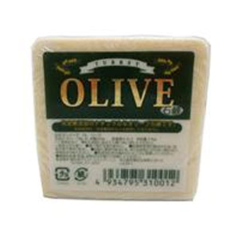 バケット事実パウダーお得な10個セット トルコ産オリーブを使用した無添加石鹸 ターキーオリーブ石鹸 135g