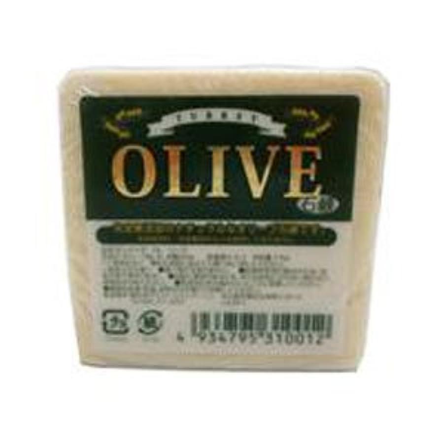 たまに早くフォームお得な5個セット トルコ産オリーブを使用した無添加石鹸 ターキーオリーブ石鹸 135g