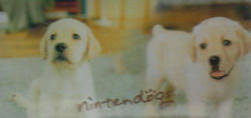 Venom Nintendo Licensed Nintendogs Labrador Graphic Skin for DS Lite (Nintendo DS) [import anglais]