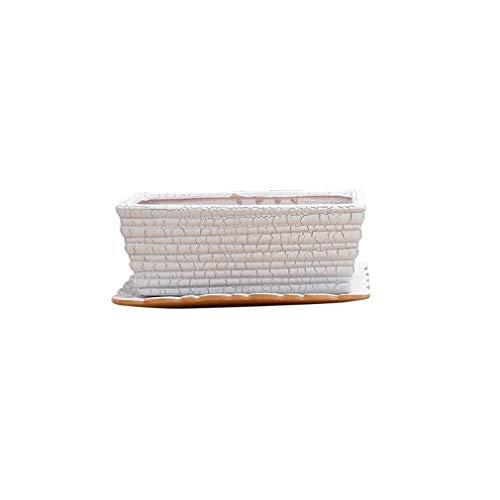 Wuzhengzhijia Rechteckige Nicht poröser Keramik Töpfe, Narzisse Töpfe, robust und langlebig, Hochtemperaturbeständige hydroponische Pflanzenkübel, Leicht zu Spiel Desktop-Bonsai