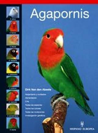 Agapornis / Lovebird (Pajaros / Birds) (Spanish Edition