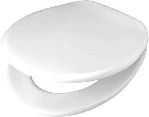 Toto Germany 794980172Pagette–Sedile WC VIP con Coperchio e Cerniera eccentrica in Acciaio Inox, pergamont