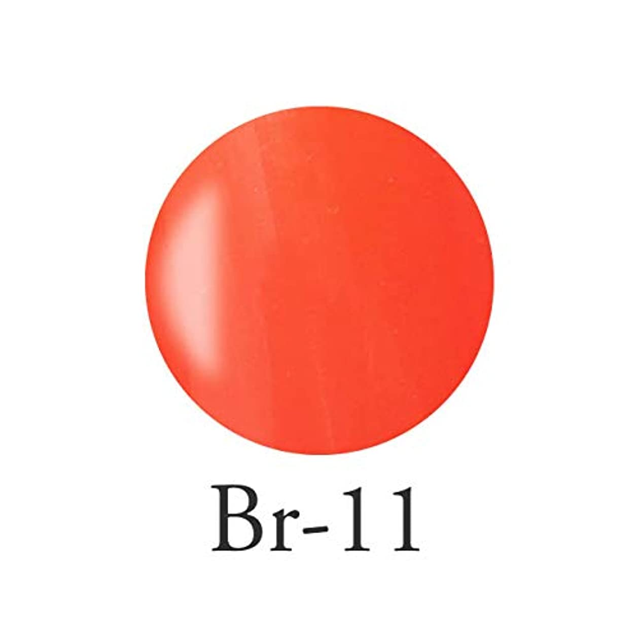 毛細血管置くためにパック六エンジェル クィーンカラージェル コロンブオレンジ Br-11 3g
