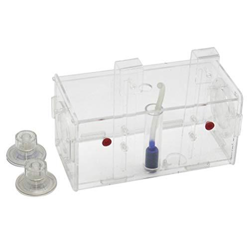 Balacoo fischzuchtbecken zuchtbox isolierbox Aquarium zuchtbox sicher acrylfischbecken transparent
