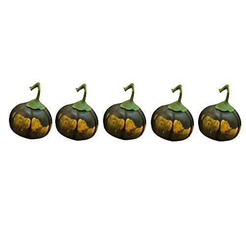 ypypiaol 5 Pezzi 1/12 Simulazione Mini Zucca Vegetale Argilla Modello Fai da Te Casa delle Bambole Accessorio Prop Zucca Verde #