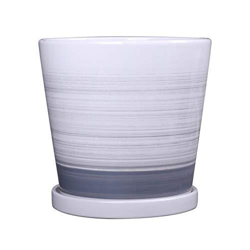 Vasi in Ceramica, Vasi da Fiori con Piante Grasse Vassoio Piante da Balcone Ragno Piante, Vasi di Fiori (Color : Gray, Size : 14cm*14.5cm)