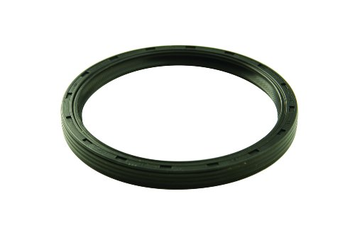 Ford Racing M-6701-B302 Rear Main Seal for 5.0L Engine