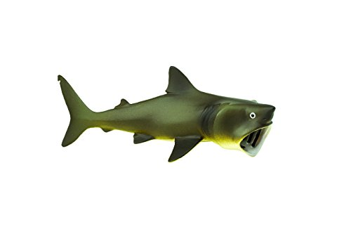 Safari Ltd Wild Safari Sea Life  Basking Shark  Educational Hand Painted Figurine  Quality Construction from Safe and BPA Free Materials  For Ages 3 and Up