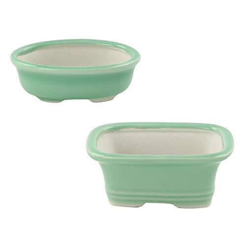 Happy Bonsai 4' (10cm) Mini Green Pots Value Set of 2