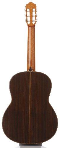 Cordoba C7 SP Acoustic Nylon String Classical Guitar