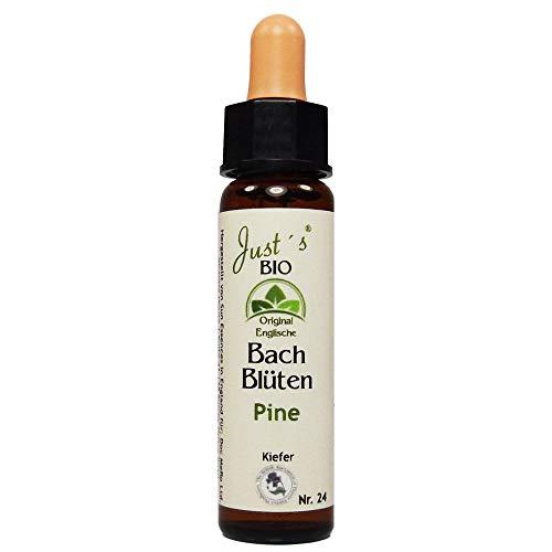 Pine Nr. 24 Just´s Original englische BIO Bachblüten Kiefer Blütentherapie für Mensch und Tier …