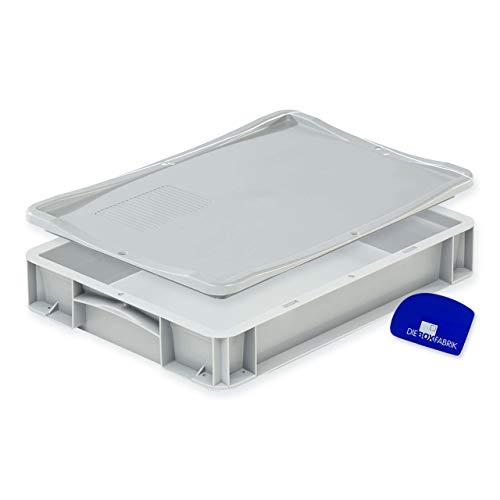 Pizzaballenbox mit Deckel (40 x 30 x 7 cm) Kunststoffbehälter für Pizzateig, Stapelbehälter, Teigwanne, Gärbox, Teigbox (1x Box mit Deckel)