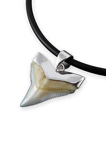Fly Style echter Haizahn Kettenanhänger mit 925 Silber Fassung, Größe:23 mm