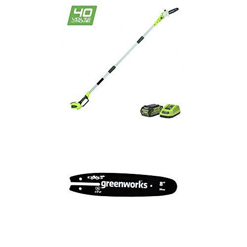Greenworks Akku-Hochentaster G40PS20 inklusive Führungsschiene (Li-Ion 40V 20cm Schwertlänge 8 m/s Kettengeschwindigkeit 3-teilige Aluminiumstange mit 2Ah Akku und Ladegerät)