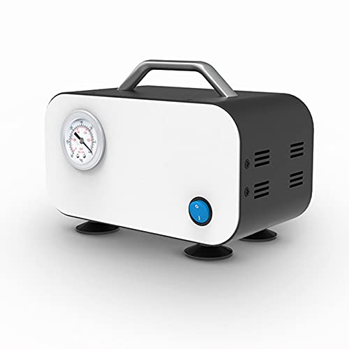 NMVB Mini Bomba de vacío de diafragma sin Aceite de 12 v, Bomba de Filtro de Laboratorio Sucastle, Bomba de presión Negativa portátil, Equipo de Laboratorio, 110v a 220v (Size : 10L)