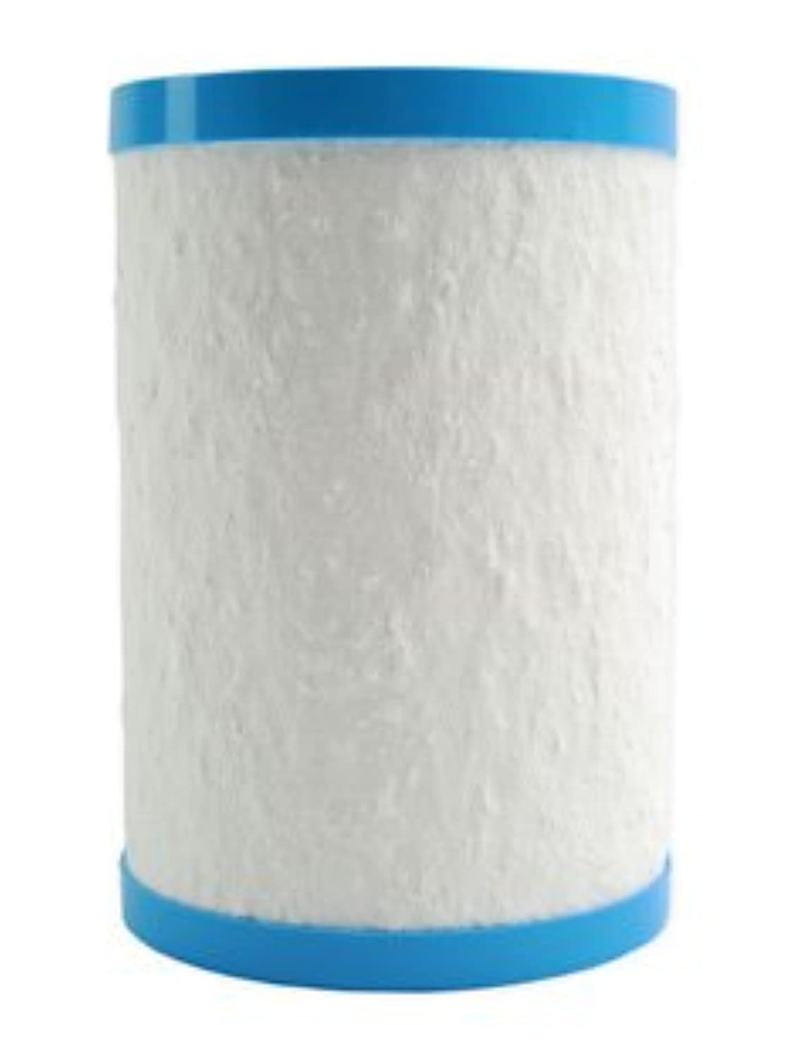 Multipure Genuine CB6 Replacement Filter