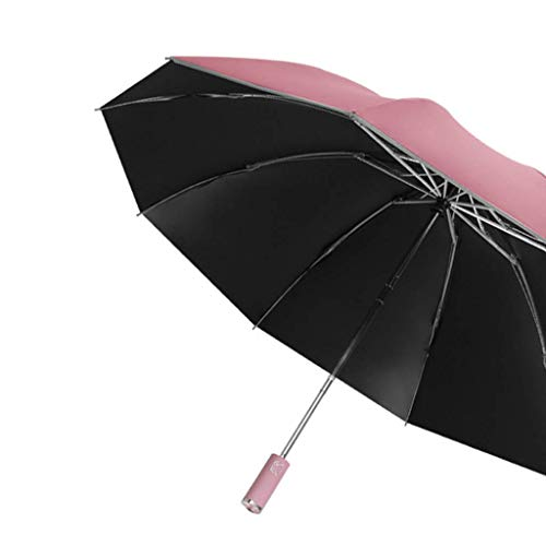 Earthily Regenschirm Durchsichtig 1E Vollautomatischer Regenschirm,Sturmfest Groß Schirm,Klappbarer Business Regenschirm Mit Reflexstreifen,Tragbar Wasser Winddicht Umbrella Fur Damen Herren,Leicht,Ko