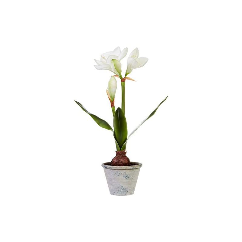 """silk flower arrangements raz imports the greenery shop 20.75"""" real touch potted amaryllis - natural looking artificial flower plant with pot - country decor and indoor garden accent - christmas greenery and holiday decoration"""