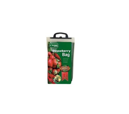 Kingfisher Strawbery Planter 1 Pack Grow Strawberries Fast Easy No Mess Durable