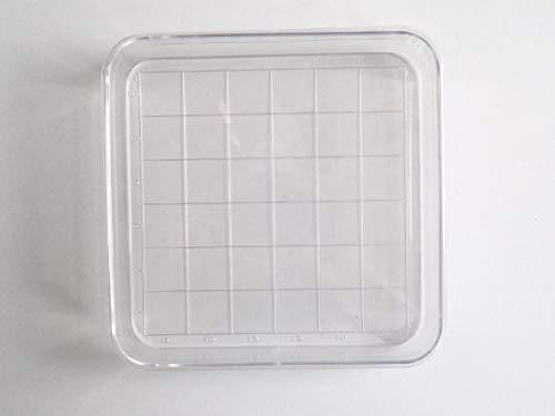 Boîte de Pétri Carré Quadrillée 10x10cm x15mm - Plastique - Petri Dish - SEM13