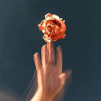 Kibariye - Gülü Soldurmam / Rasidan