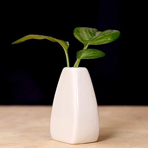 Macaron sencilla pequeño jarrón Ceramic Design, Creative Green rábano hidropónico Botella, en flores amarillas Flor, una mesa pequeña fresca, Usado suculento de Macetas, Cactus Macetas, flor d