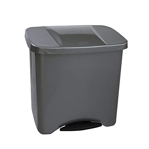 Denox 24160.790 Poubelle à Pédale Écologique, 50 L, Gris Mat, Polypropylène, Unique