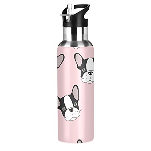 Xigua Stainless Steel Double Wall Water Bottle,French Bulldog Vacuum Insulated Bottle With Straw Lid, Insulated Water Bottle Keeps Water Cold for 24 Hours, Hiking, Sports, Outdoor