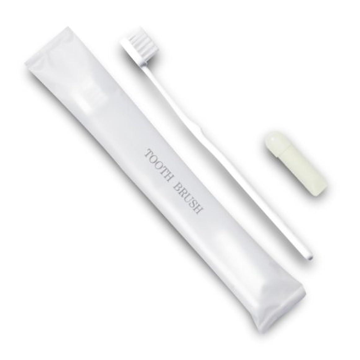 に関して容赦ない現実的ホテル業務用歯ブラシ21穴(白)3gチューブ マット袋FタイプDX 10本