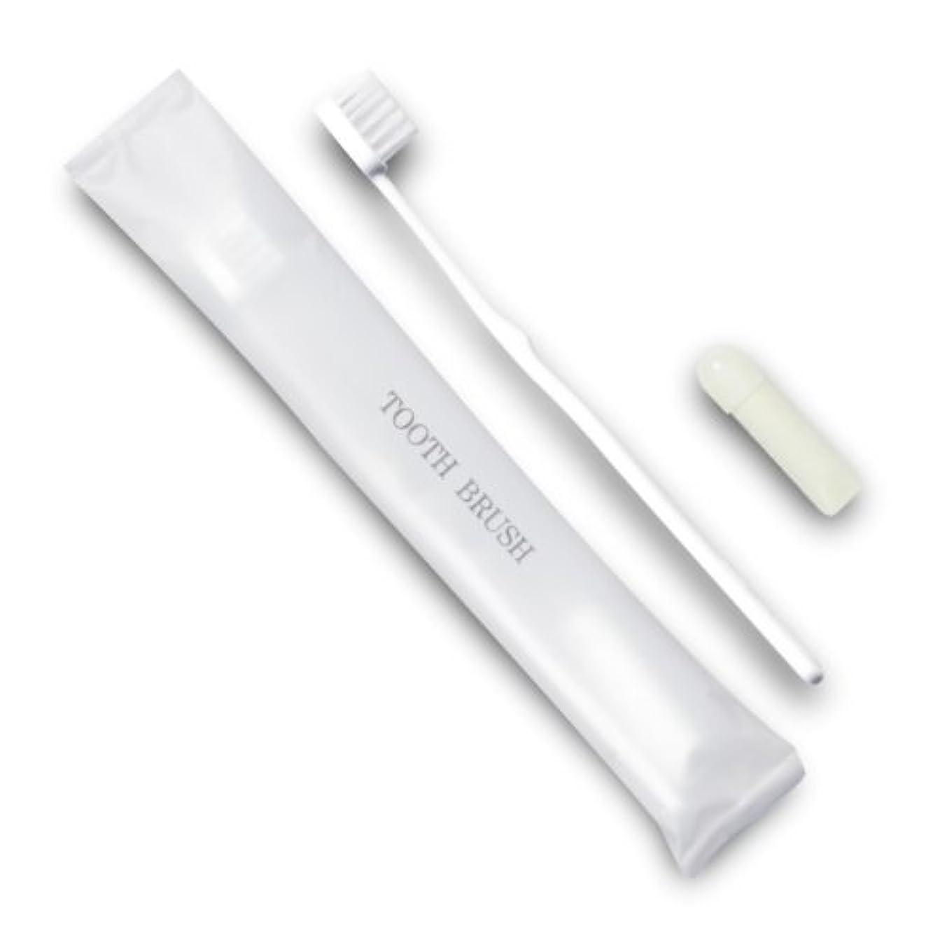犯すパッチ乗算ホテル業務用歯ブラシ21穴(白)3gチューブ マット袋FタイプDX 10本