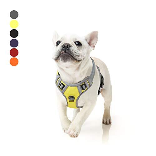 Hundegeschirr Grosse Mittelgroße Hunde Verstellbares Reflektierendes Hunde Geschirr No Pull, Brustgeschirre für Hunde Mit Post-Positiver D-Ringschnalle Grün M