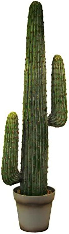 Schlanker & Moderner Kaktus im grauen Topf - XL Kunstkaktus   Künstlich - Hhe 124cm - Premium Kunstpflanze - Sukkulenten Pflanze - Grüner Kaktus Künstlich   Kunstkaktus   Dekopflanze   Dekokaktus mit festem Stand - Naturgetreu & Hochwertig
