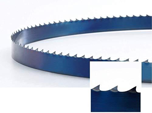 FEMI 784 - Hoja de sierra de cinta HSS M42 1440 x 13 x 0,65 mm 10/14 ZpZ