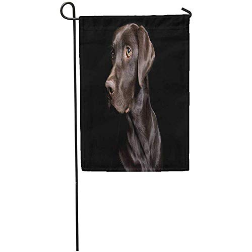 Zome Lag Tuinvlaggen Seizoen Vlag Banners 32X45.7CM Bruin Hond Lage Sleutel van Chocolade Lab op Zwarte Outdoor Decoratieve Huis Yard Vlag