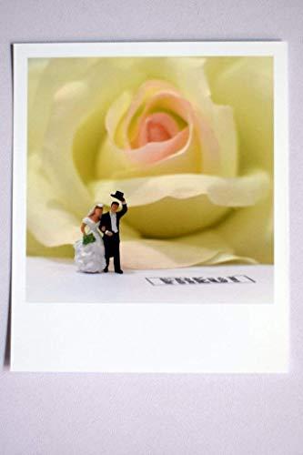 Fröhliche Fotografie im Polaroid Stil | Hochzeit Freude Glück Rose Braut Bräutigam