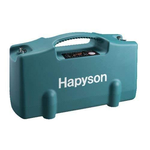 ハピソン(Hapyson) リチウムイオンバッテリーパック YQ-100