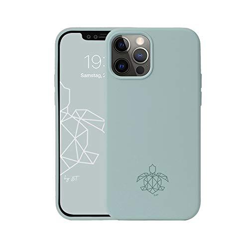 turtleandcase Hülle Kompatibel mit iPhone 12/12 Pro & kostenlosem Panzerglas, Silikon Handyhülle, Dünne Schutzcase & Stoßfest für iPhone 12/12 Pro 6,1 Zoll (Helles Minzgrün)